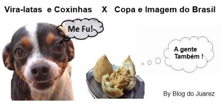 vira-latas-e-coxinhas